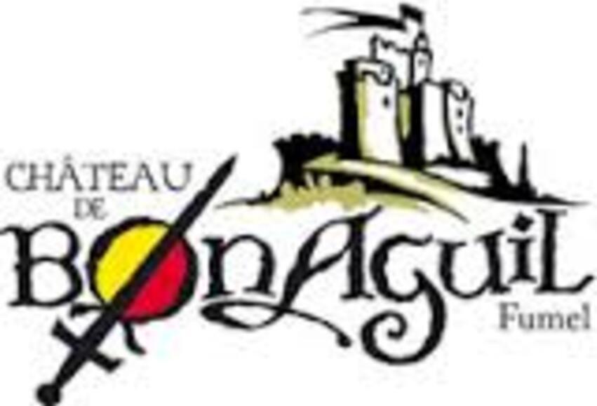 VACANCES 09/2014 CHATEAU DE BONAGUIL  FUMEL 47      8/8       D  20/07/2016