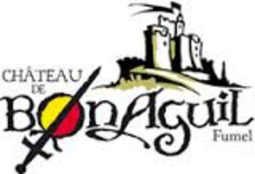 VACANCES 09/2014 CHATEAU DE BONAGUIL  FUMEL 47             D  00/00/201