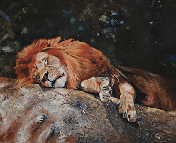 tigre contre lion