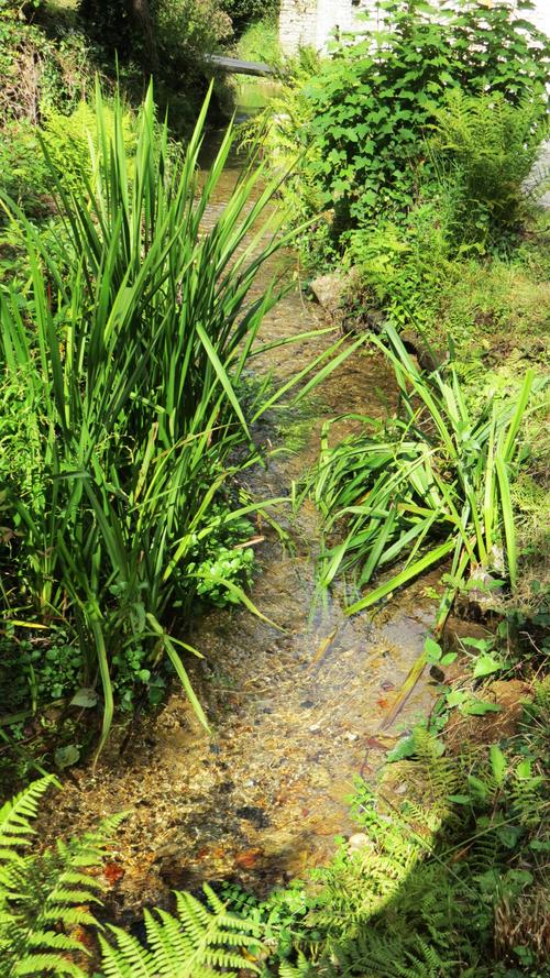 Moulin à eau de Tréouzien