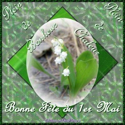 Cartes Virtuelles Gratuites Muguet 1er Mai Passion Des Fleurs