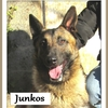 Junkos BA 3
