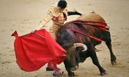 Pétition : Contre la décision de l'UNESCO de considérer les corridas comme ''patrimoine Immatériel de l'humanité''