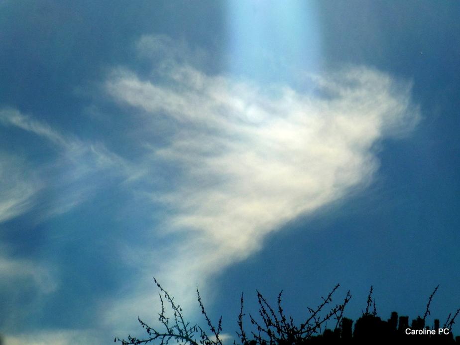 37- Des anges dans les nuages