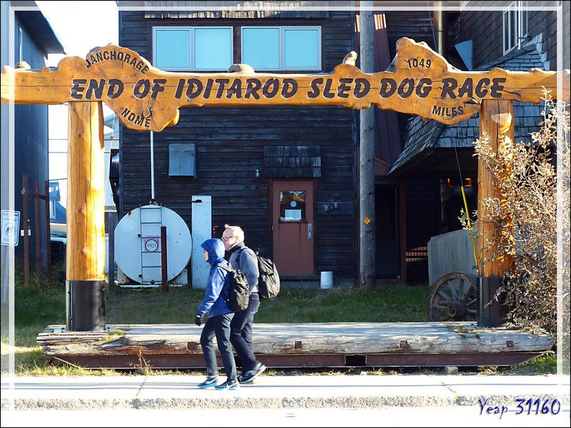 """Promenade dans Nome, ville d'arrivée de la course de chiens de traîneaux """"Iditarod"""" - Alaska"""