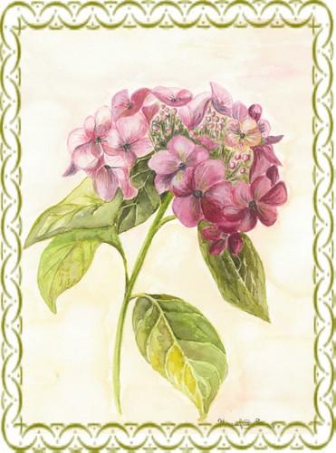 Aquarelle-hortensia.jpg