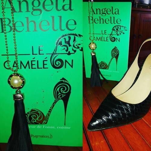 """""""Le Caméléon"""" d'Angela Behelle, une belle romance aux accents de conte de fée moderne : 17/20"""