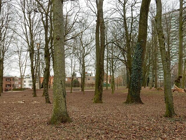Parc Hauwaert suite