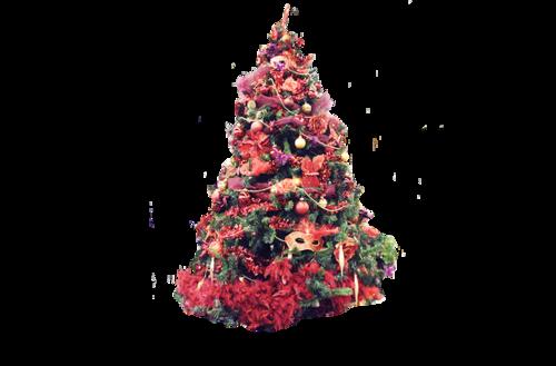Noël 3