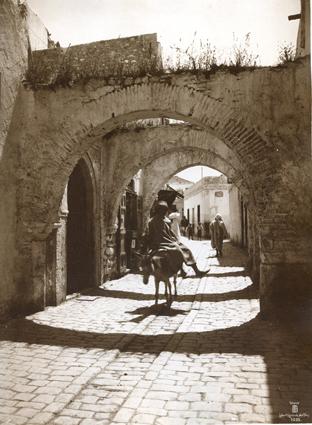 Déplacement à dos d'âne. Tunis. 1910