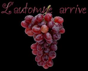 raisin-automne