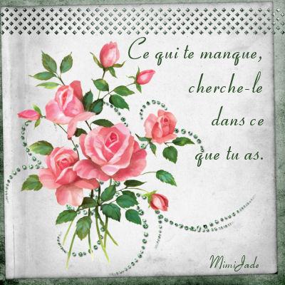 **Pensées de roses 3**