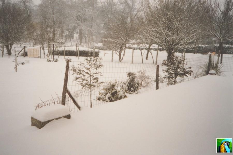 Dernière Neige en 1999/2001 du côté de Bodeaux
