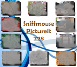 Picture It 228 - Sniffmouse