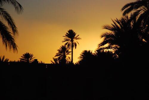 Un beau coucher de soleil depuis le camping