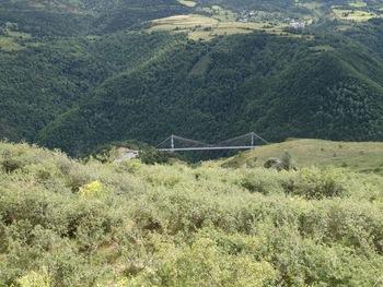 Au fond de la vallée de la Tet, le Pont Gisclard, sur la voie du Train jaune
