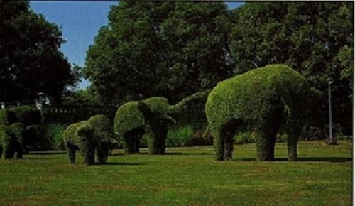 THAILANDE : BANG-PA-IN  et « THINANG UTHAYAN PHUMISATHIAN » et son jardin a l'art topiaire .