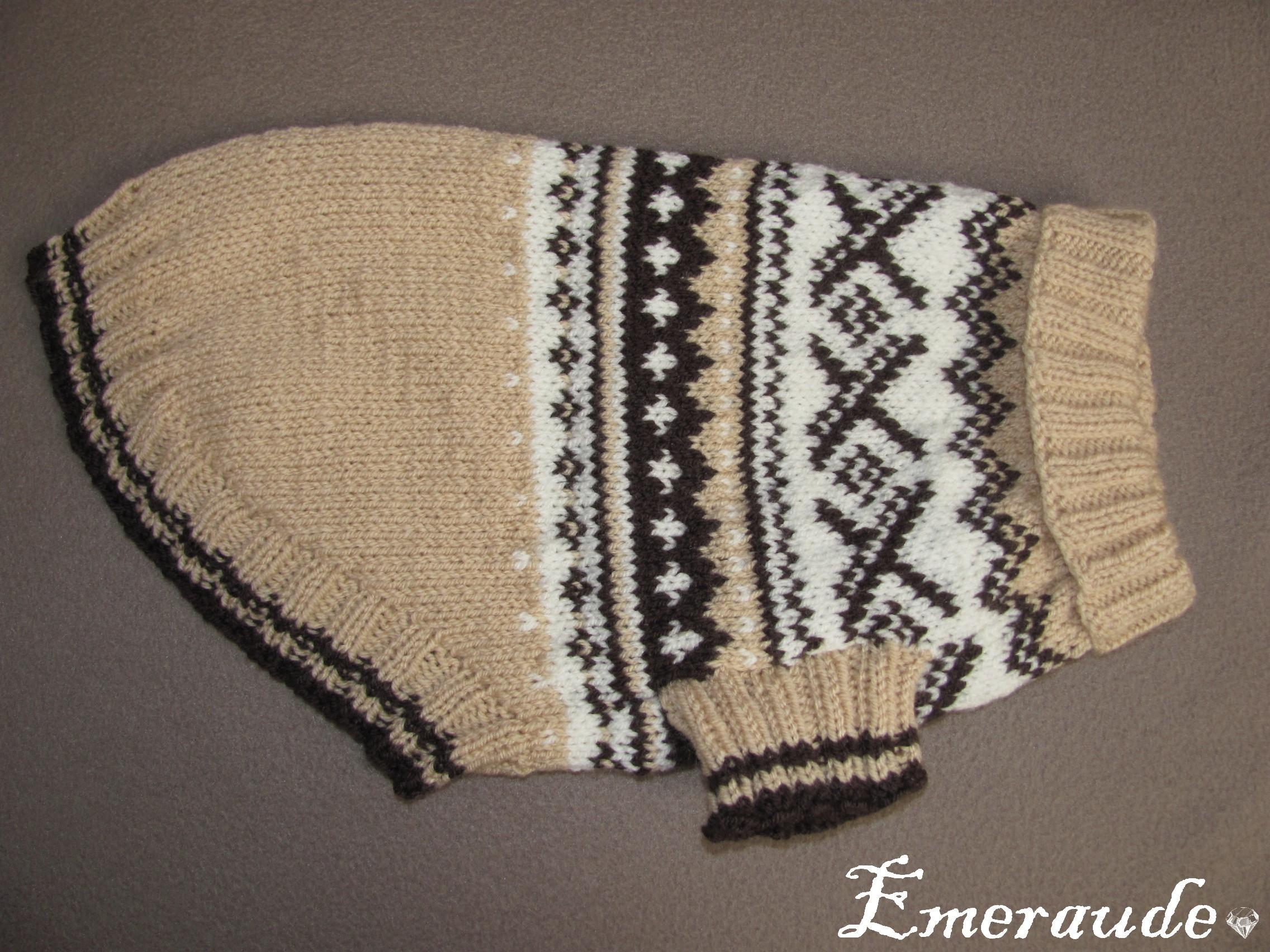 Tricot: pull pour chien