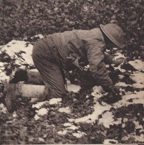 * Etape n° 30 - 22-25 Novembres 1944 - Légionnaires, Fusiliers Marins et Sapeurs du Génie à l'assaut du Ballon d'Alsace