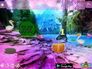 Jouer à Duck forest escape