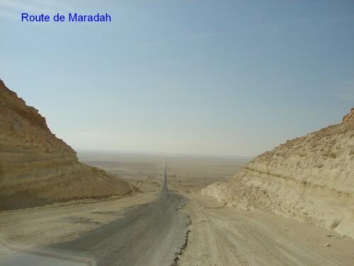 Maradah et les bois fossiles