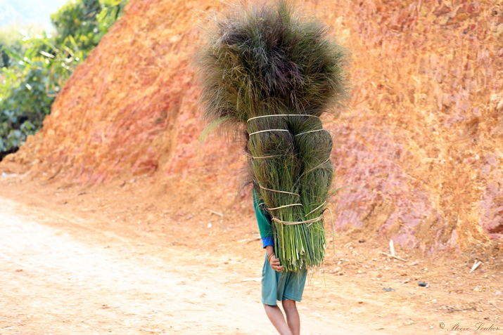 Trek de 8 jours au Nord Laos