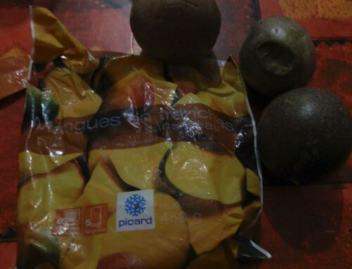 Bavarois mangue/passion