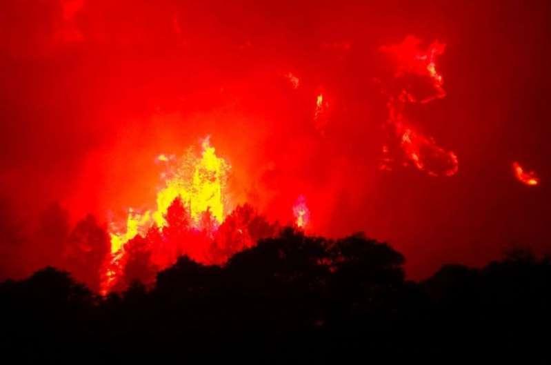Pyrénées-Orientales : l'auteur présumé de 12 incendies écroué