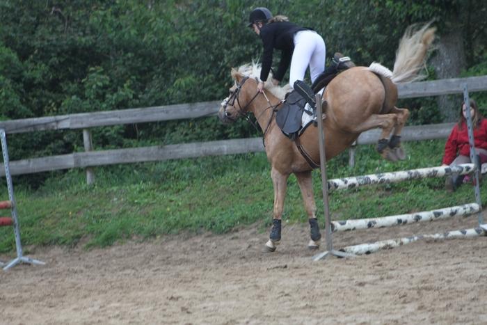 C.S.O. du 20/05/2012 - Centre Equestre du Petit Gomare
