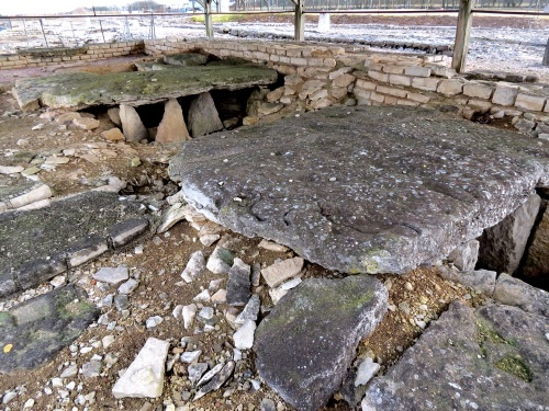 La cité Gallo-Romaine d'Alesia..