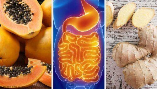 Fruits et herbes pour soulager les complications digestives