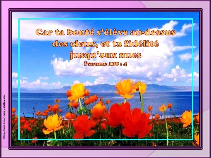 Car ta bonté s'élève au-dessus des cieux - Psaumes 108 : 4