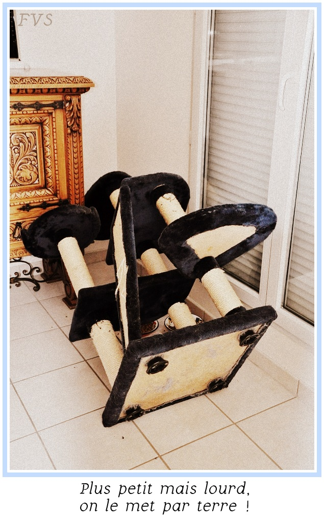 les chats du bocage arbre chats tour pour chats. Black Bedroom Furniture Sets. Home Design Ideas