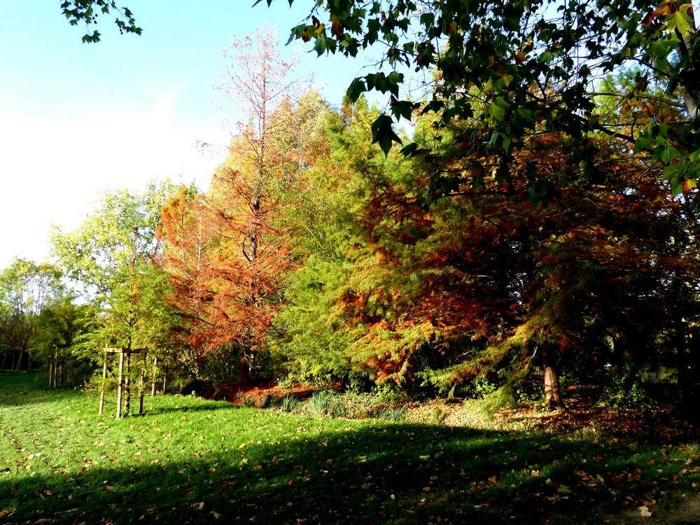 Balade d'automne en couleur