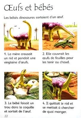 Les dinosaures 5