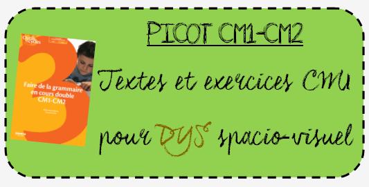 Ressources DYS : PICOT CM1-CM2