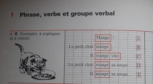 E / Le groupe verbal