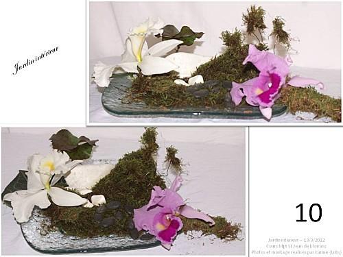 2012 03 13 jardin interieur floriscola (13)