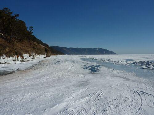 Chiens de traineaux sur le Baikal!