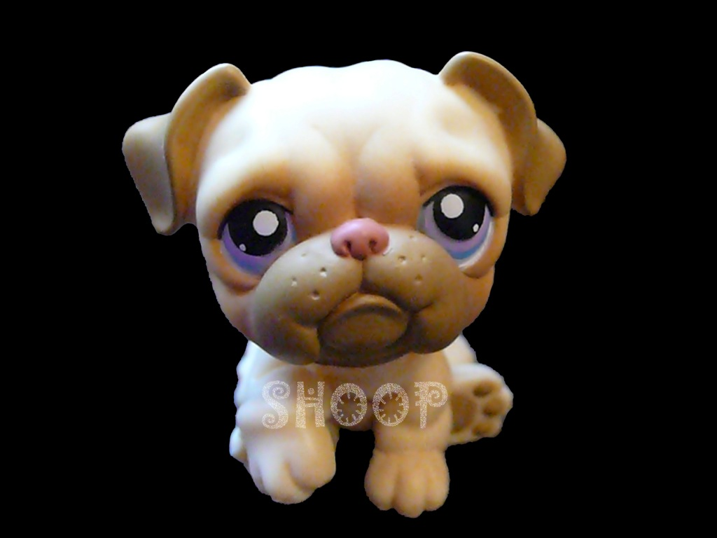 LPS 135