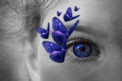 Des papillons dans les yeux .......