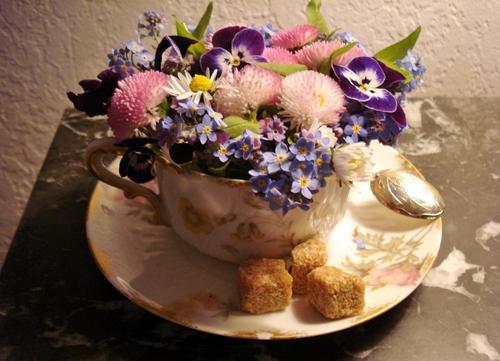 Gagnez vos entrées pour la fête des plantes de printemps de Chantilly...