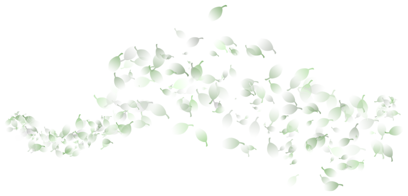 Украшалки цветочные (52).png