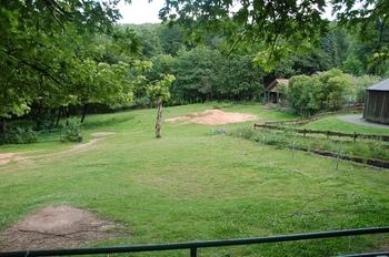Zoo Neunkirchen 2012 049