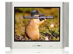 hamster-tele.jpg