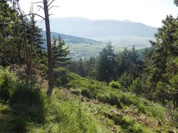 La vallée de Rieutord