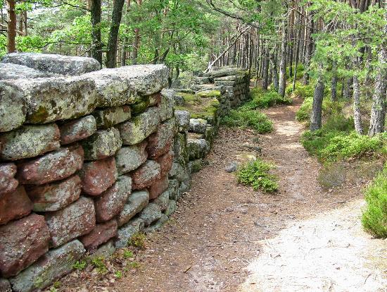 vue du mur païen - Photo de Mur Païen, Ottrott - Tripadvisor
