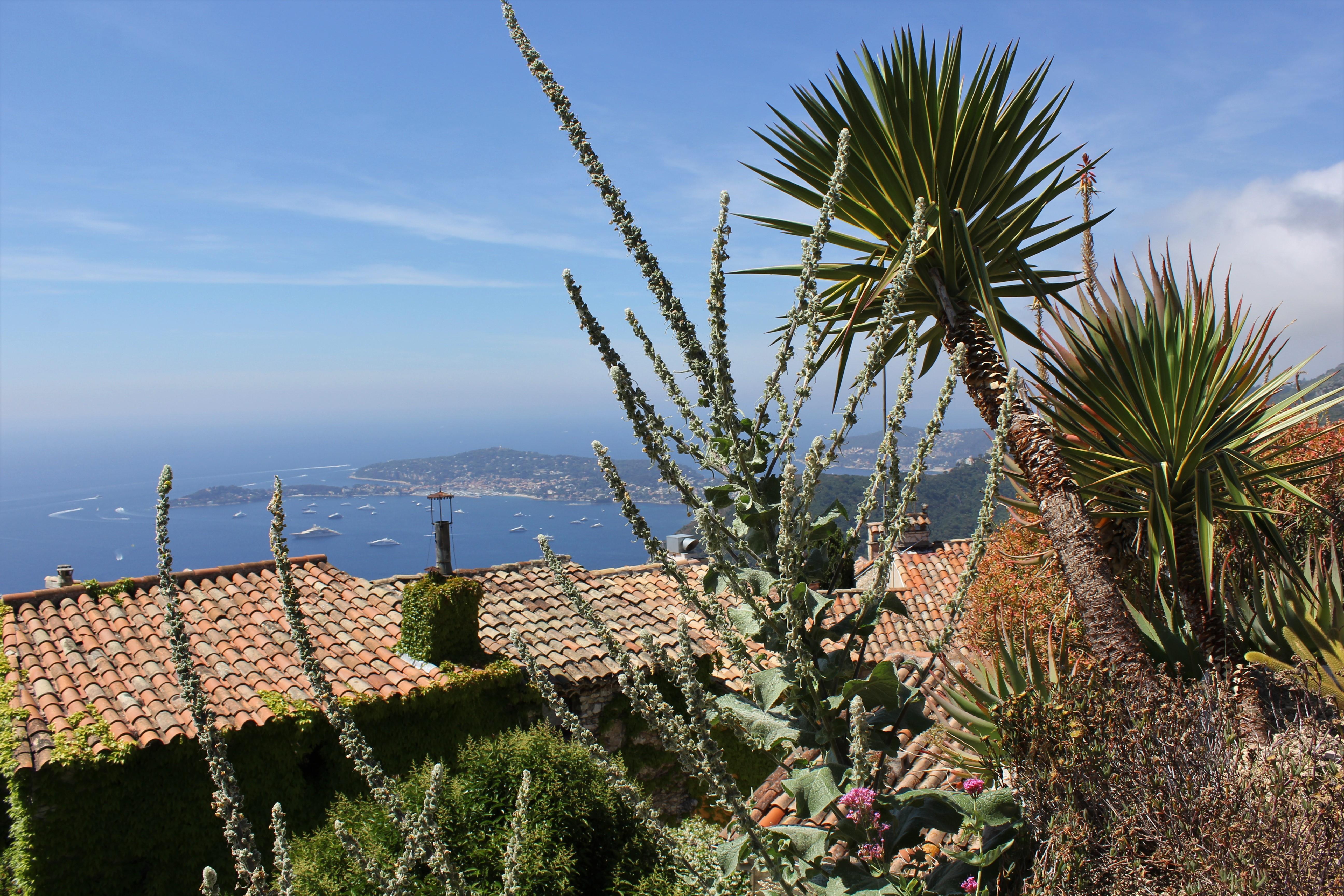 Eze dans les Alpes Maritimes : le jardin exotique 1/2 - Sable émouvant