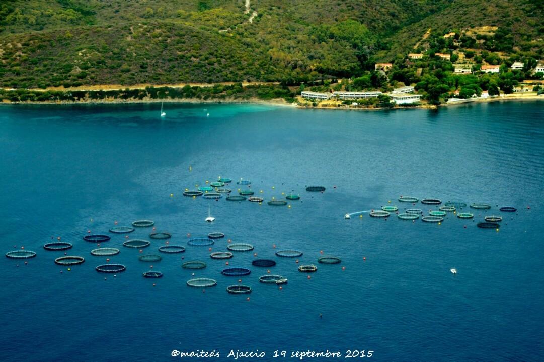 Ferme aquacole Ajaccio Corse