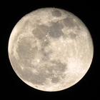 Zoom sur une pleine lune - 1 - Photo : Michaël